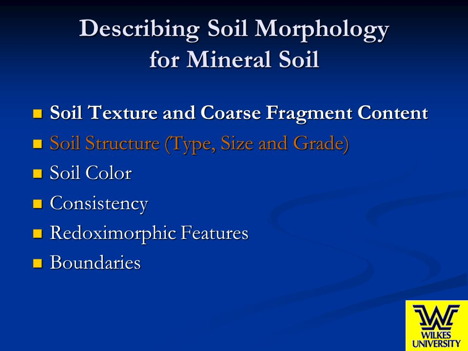 Describing Soil Morphology for Mineral Soil