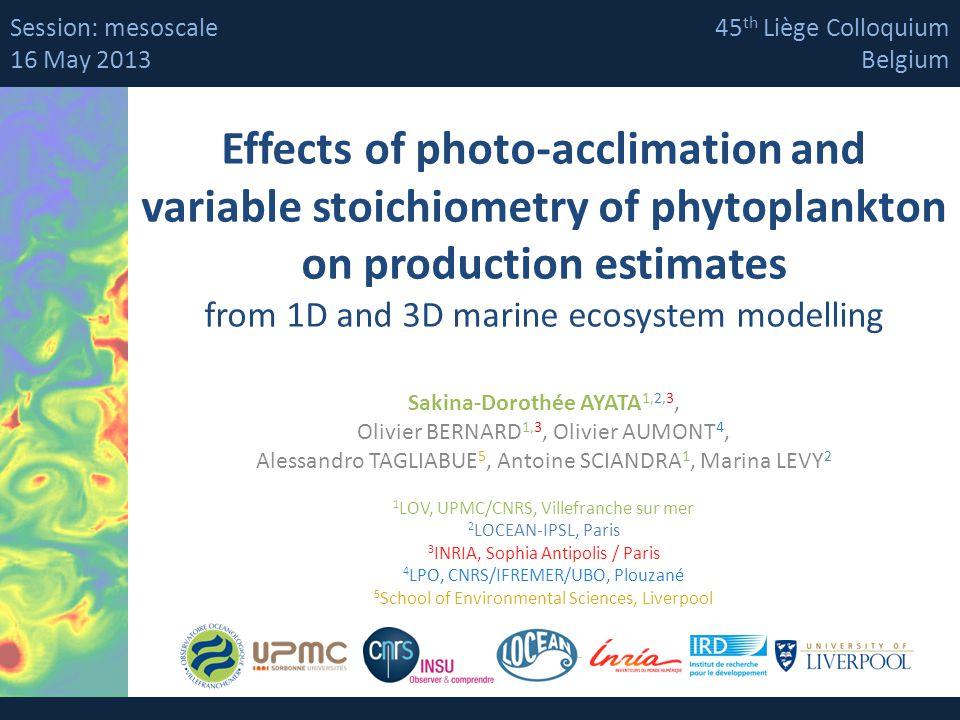 Session: mesoscale 16 May 2013. 45th Liège Colloquium. Belgium.