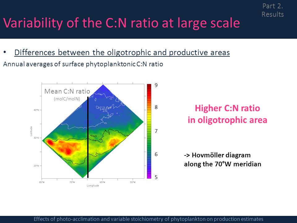 Variability of the C:N ratio at large scale