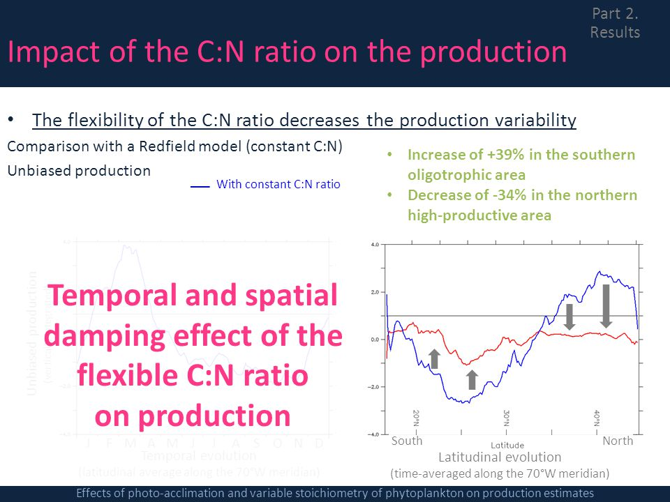 Temporal and spatial damping effect of the flexible C:N ratio