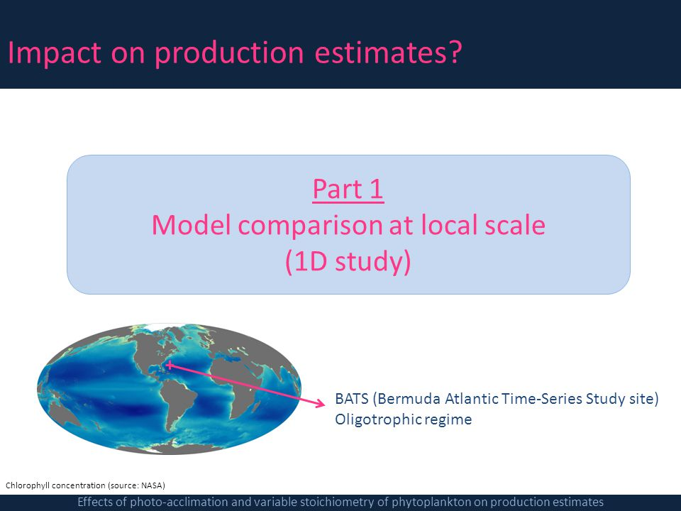 Model comparison at local scale
