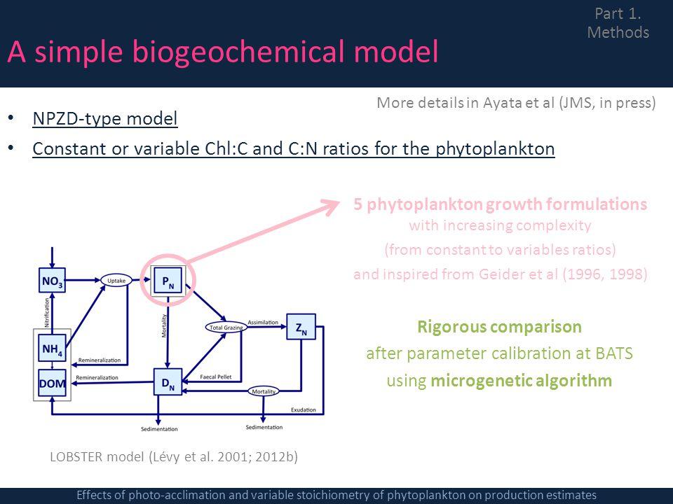 A simple biogeochemical model