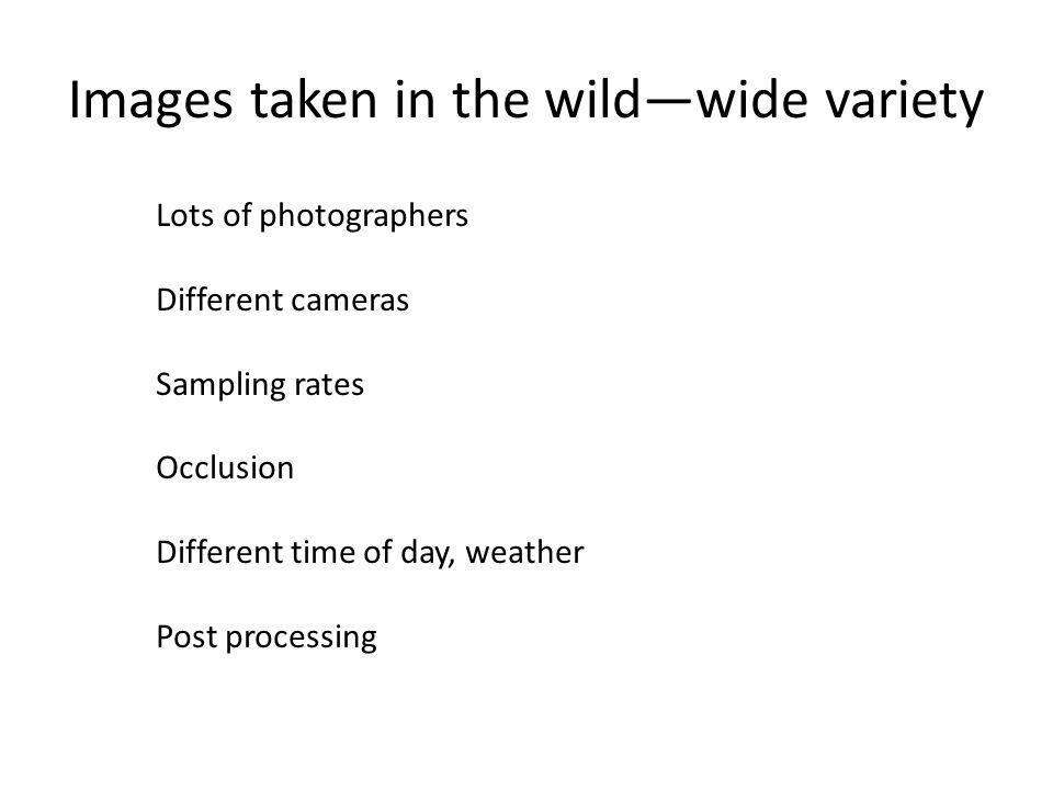 Images taken in the wild—wide variety
