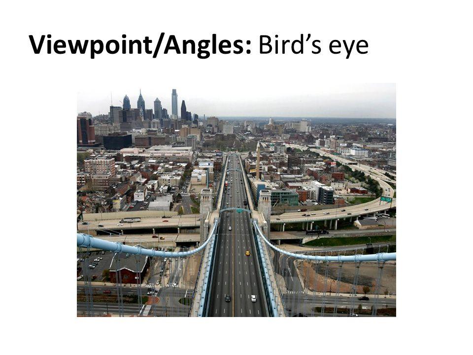 Viewpoint/Angles: Bird's eye