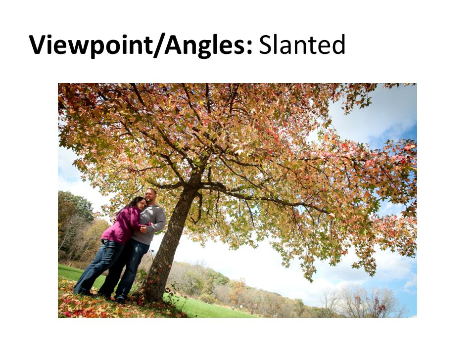 Viewpoint/Angles: Slanted