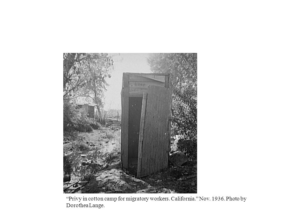 Privy in cotton camp for migratory workers. California. Nov. 1936
