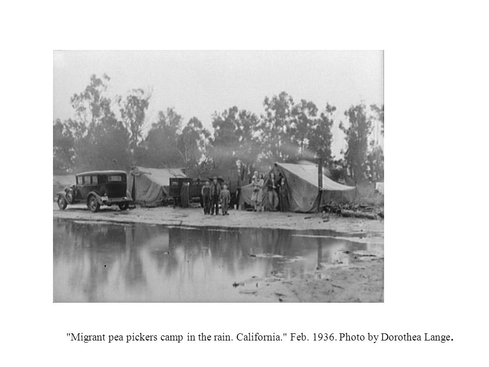 Migrant pea pickers camp in the rain. California. Feb. 1936