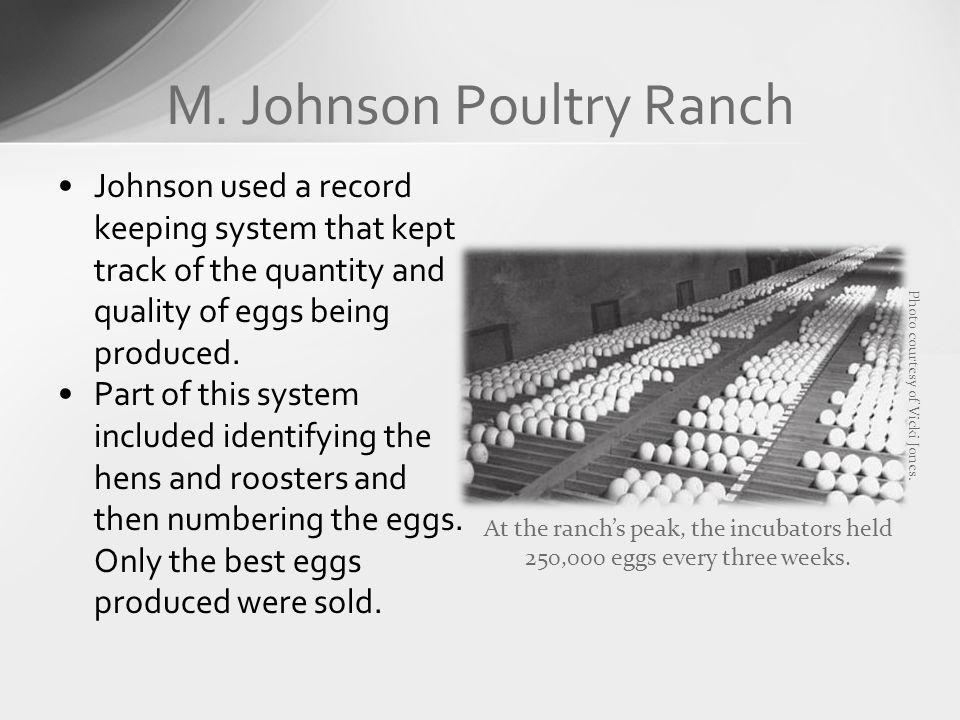 M. Johnson Poultry Ranch