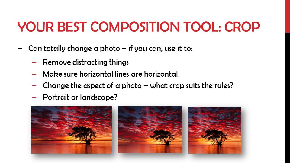 Your best composition tool: crop