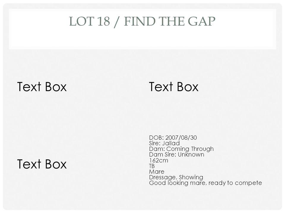 Lot 18 / Find the Gap Text Box Text Box Text Box DOB: 2007/08/30