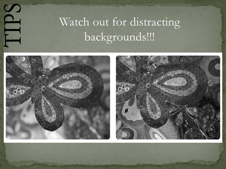 Watch out for distracting backgrounds!!!