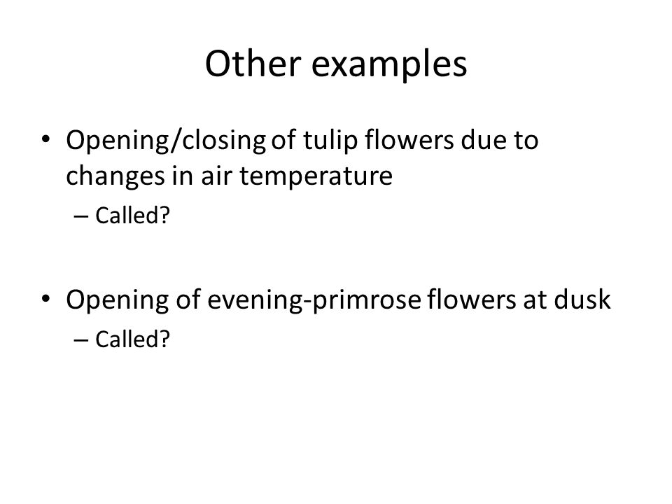 Other examples Opening/closing of tulip flowers due to changes in air temperature.