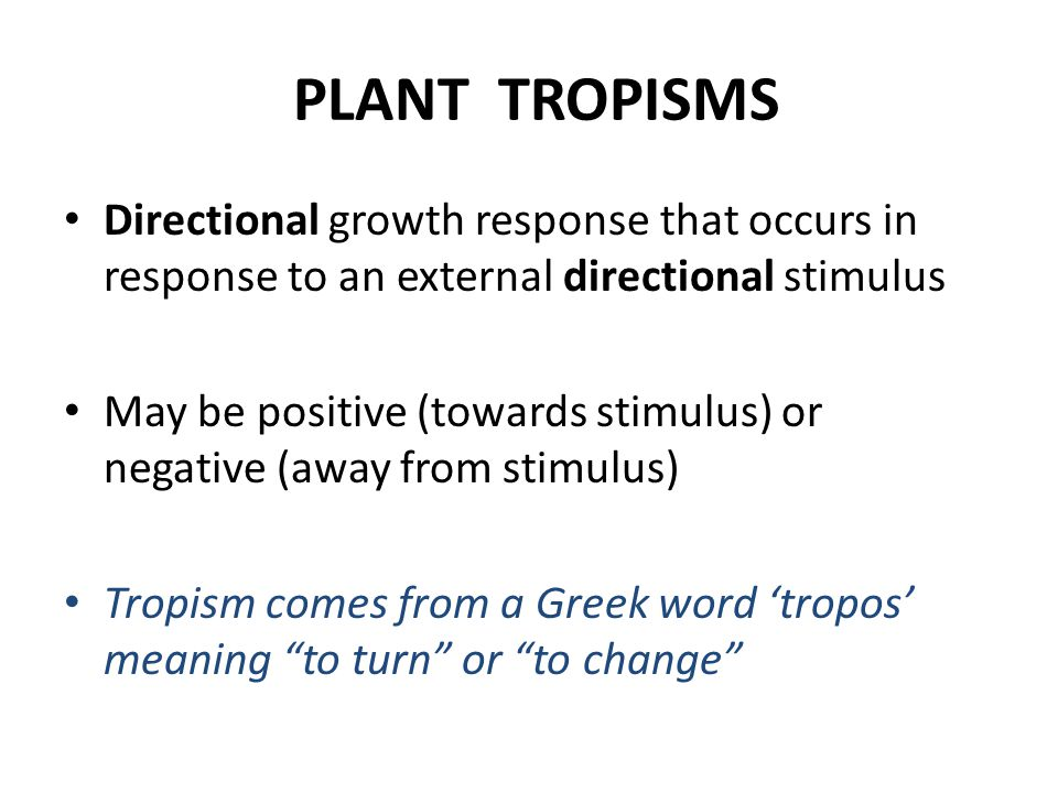 PLANT TROPISMS Directional growth response that occurs in response to an external directional stimulus.