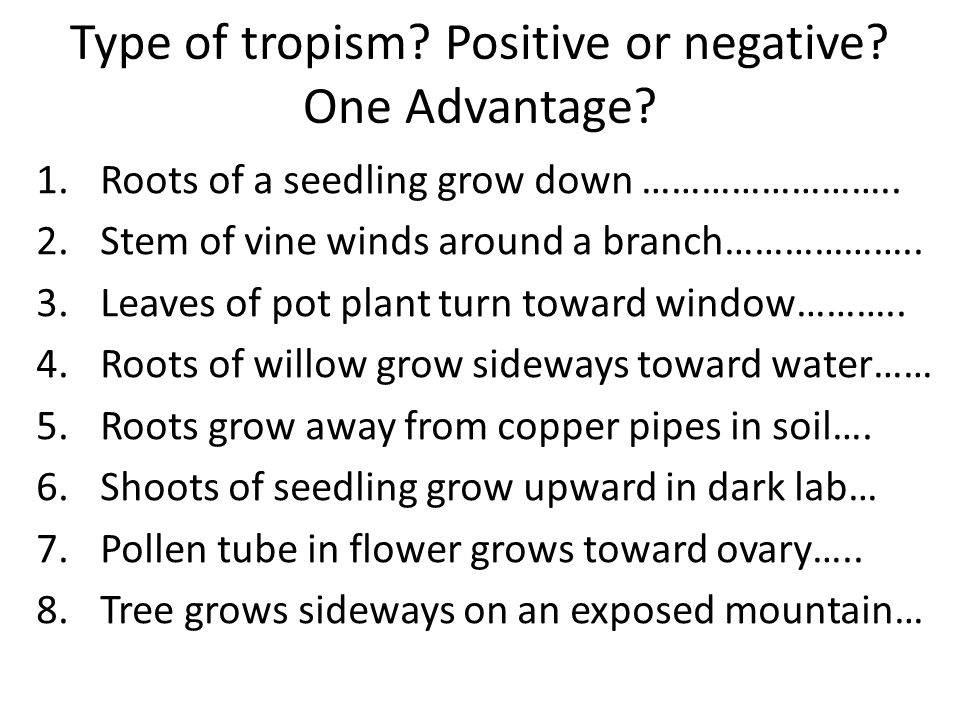 Type of tropism Positive or negative One Advantage