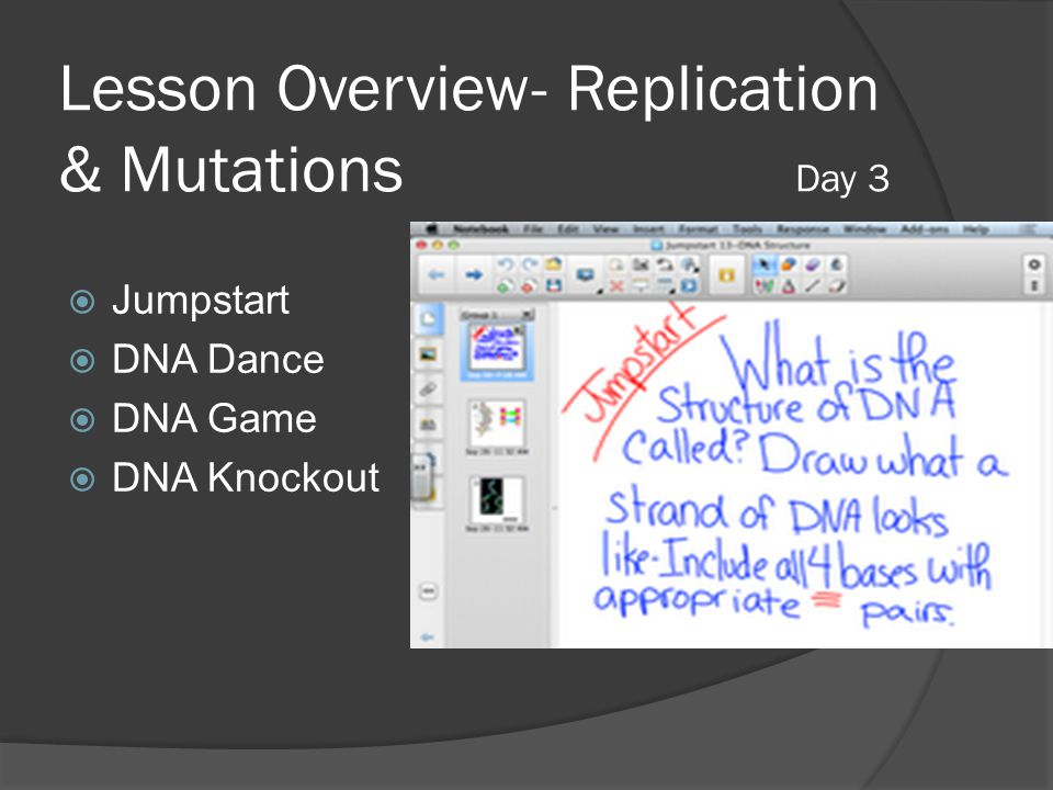 Lesson Overview- Replication & Mutations Day 3