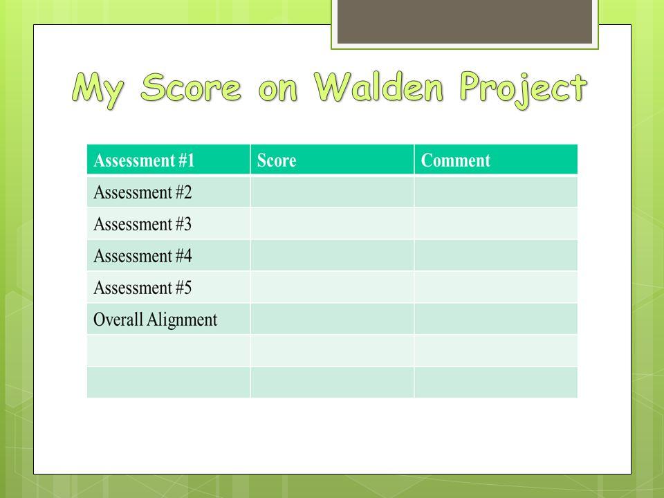 My Score on Walden Project