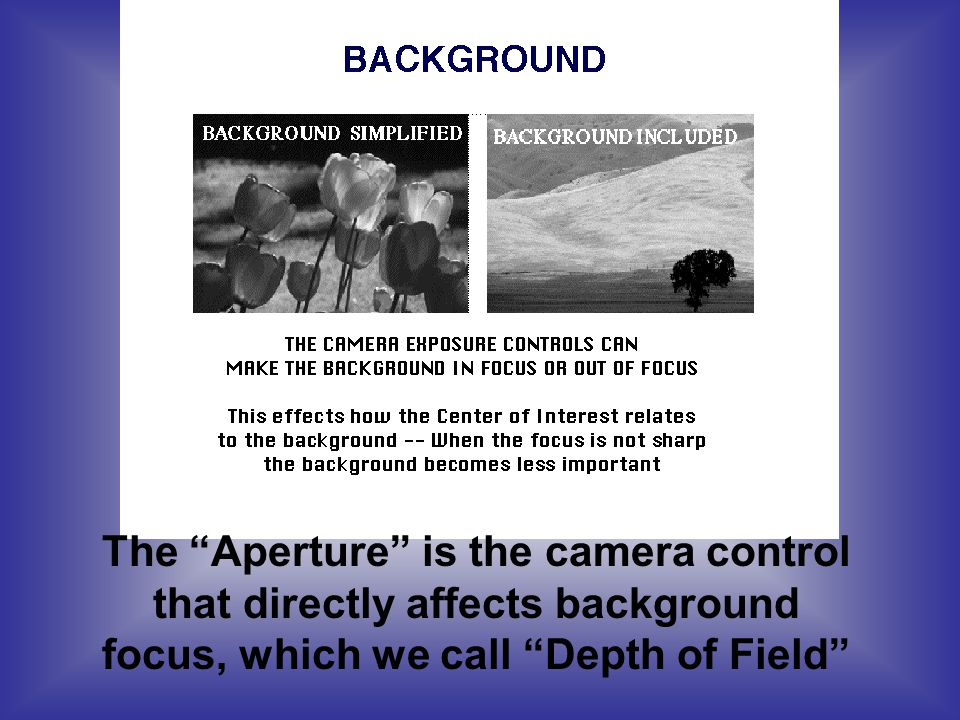 The Aperture is the camera control that directly affects background focus, which we call Depth of Field