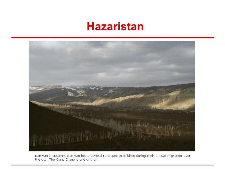 Hazaristan Bamyan in autumn.