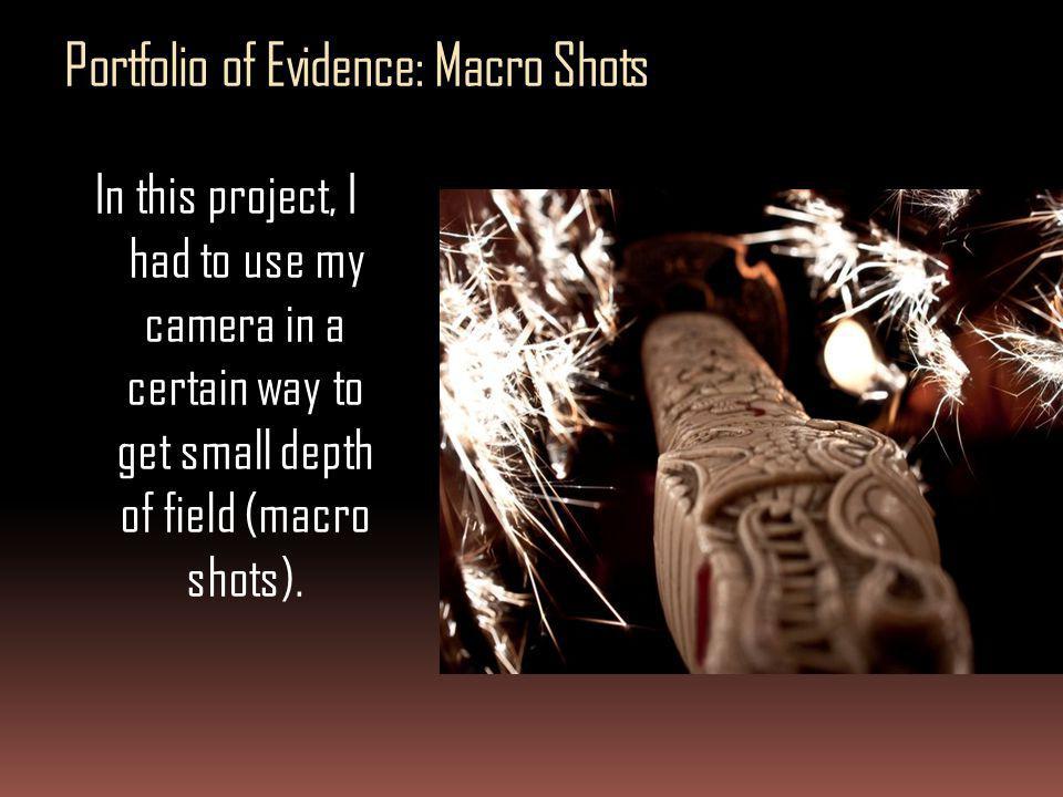 Portfolio of Evidence: Macro Shots