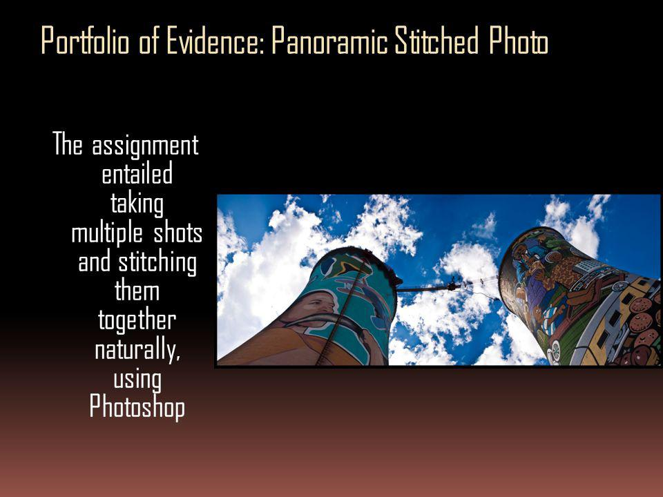 Portfolio of Evidence: Panoramic Stitched Photo