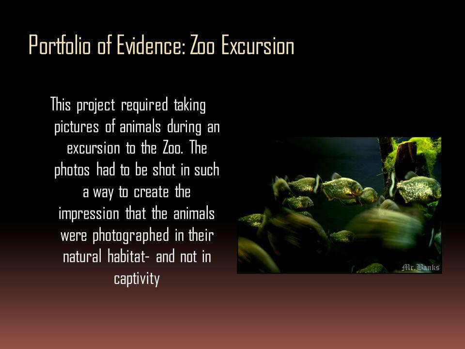 Portfolio of Evidence: Zoo Excursion