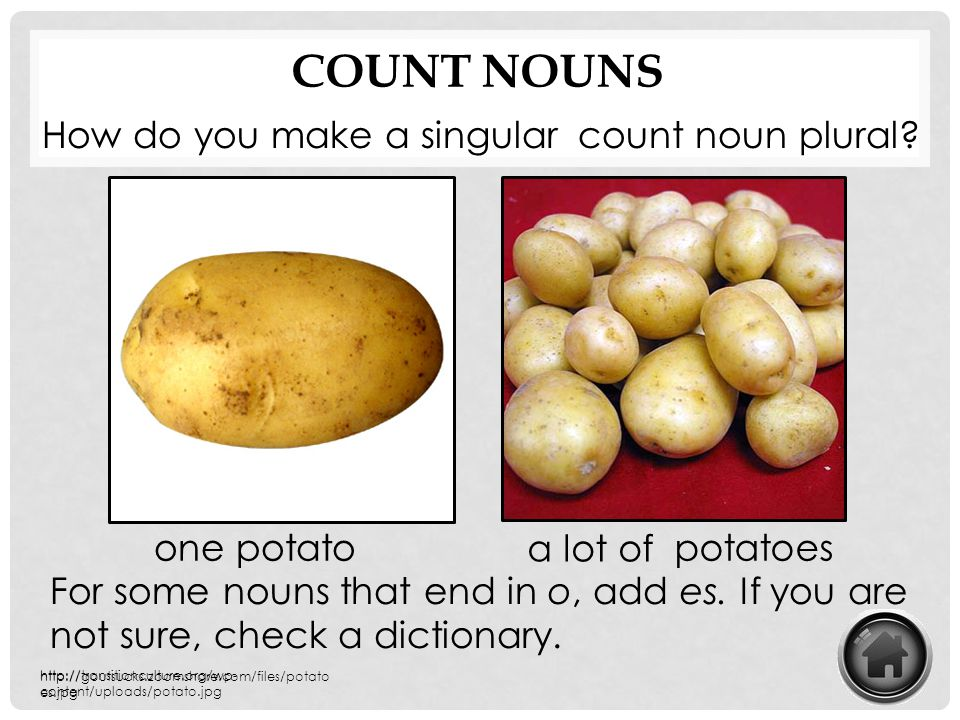 Count Nouns How do you make a singular count noun plural one potato