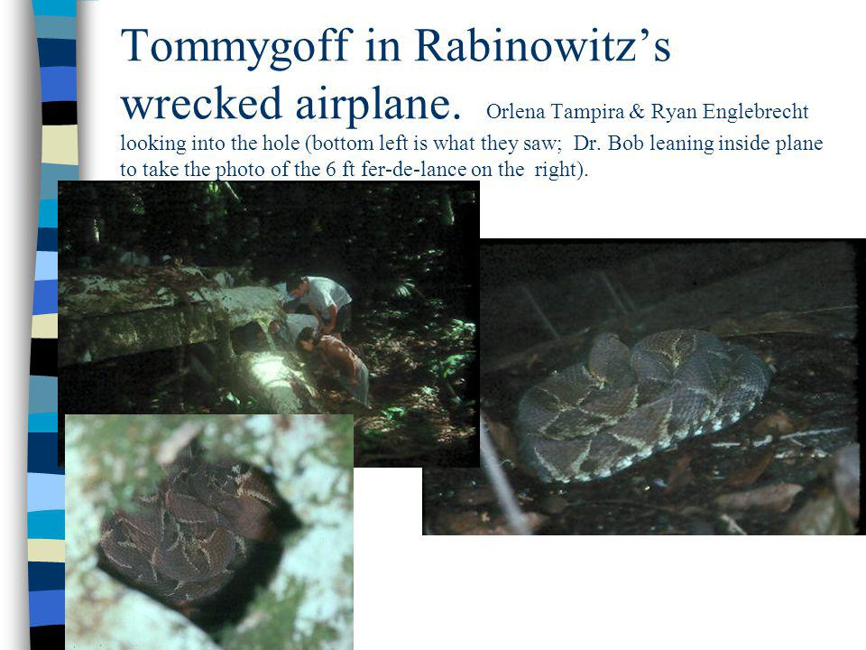 Tommygoff in Rabinowitz's wrecked airplane