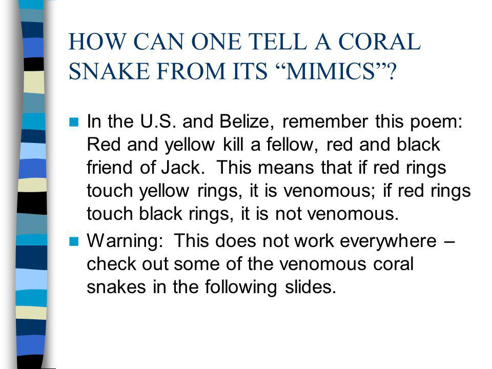 HOW CAN ONE TELL A CORAL SNAKE FROM ITS MIMICS