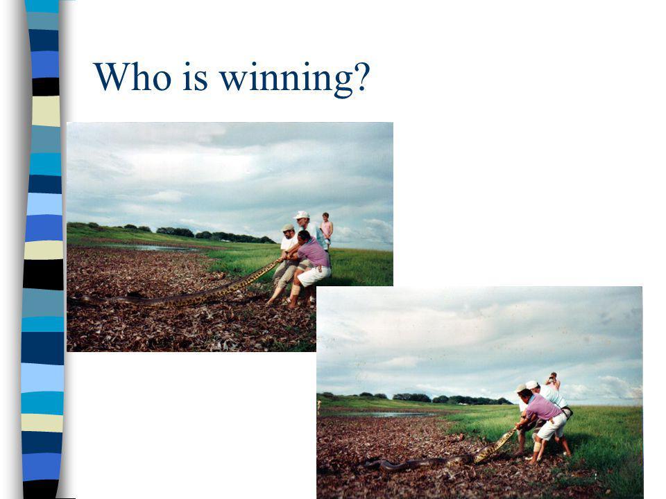 Who is winning