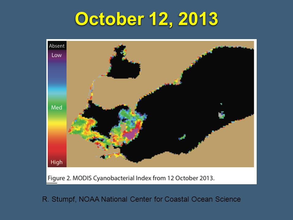 October 12, 2013 R. Stumpf, NOAA National Center for Coastal Ocean Science