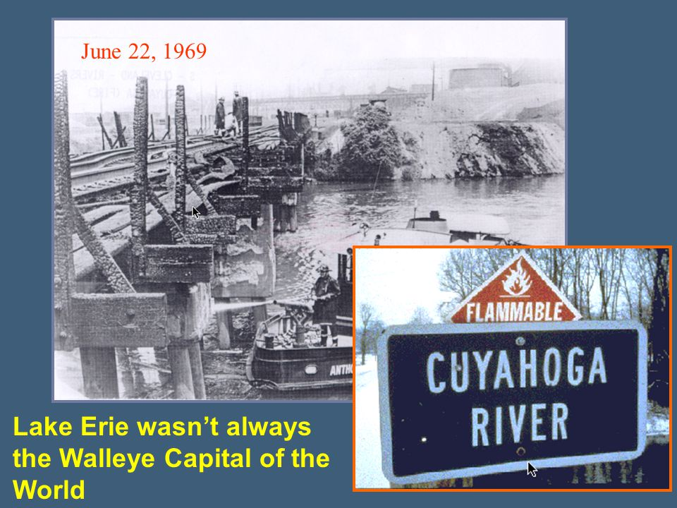 Lake Erie wasn't always the Walleye Capital of the World