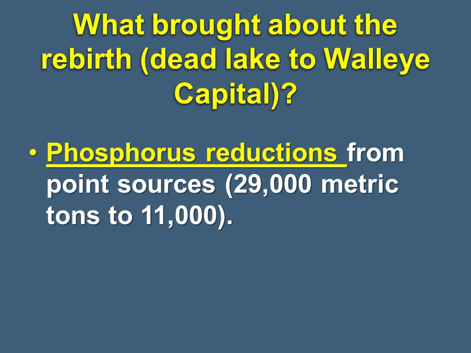 What brought about the rebirth (dead lake to Walleye Capital)