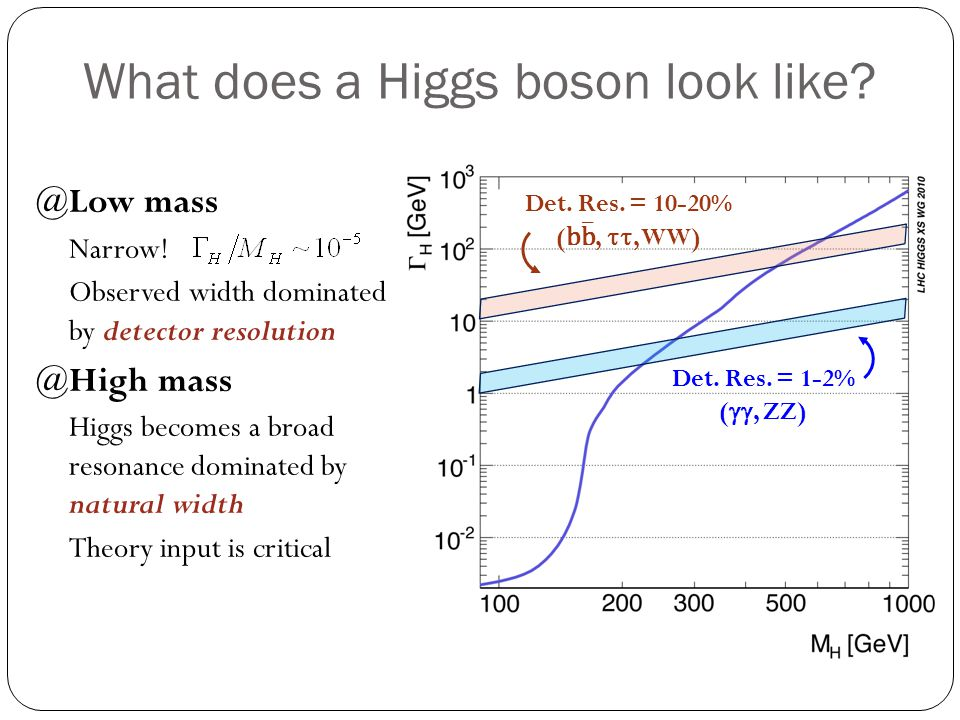 What does a Higgs boson look like