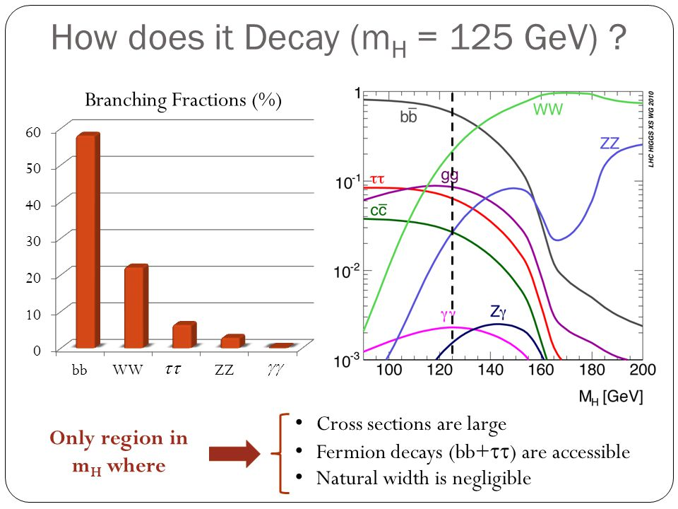 How does it Decay (mH = 125 GeV)