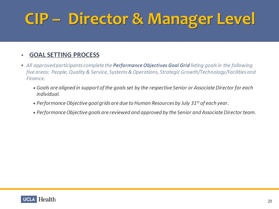 CIP – Director & Manager Level