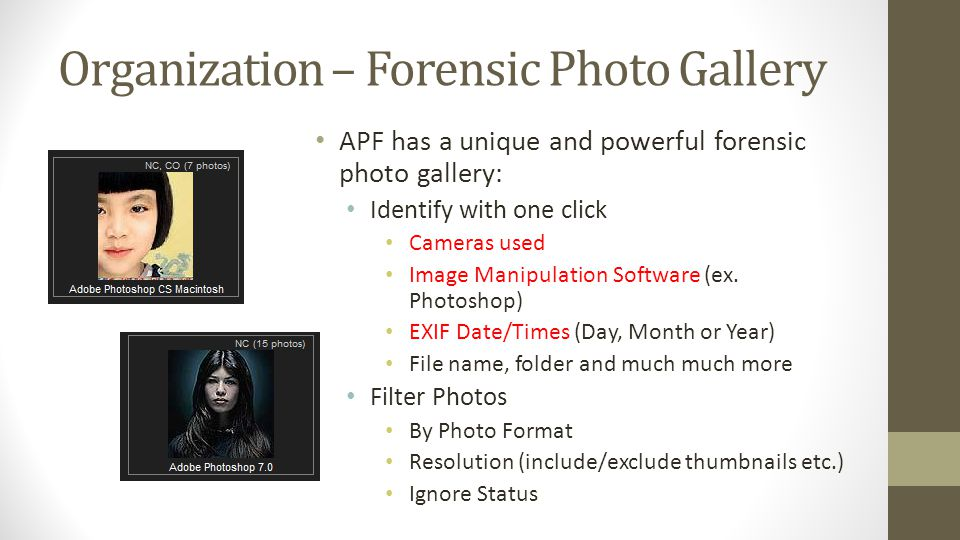 Organization – Forensic Photo Gallery