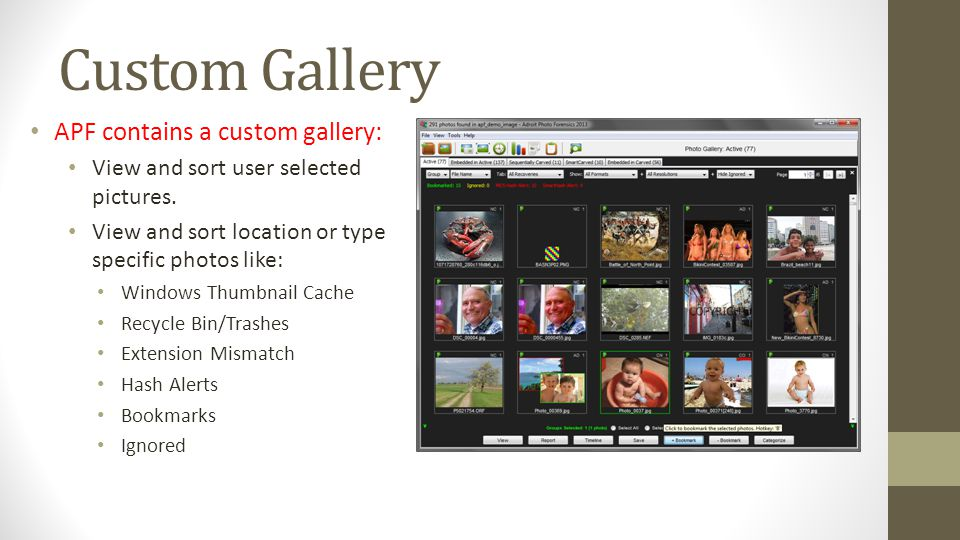 Custom Gallery APF contains a custom gallery: