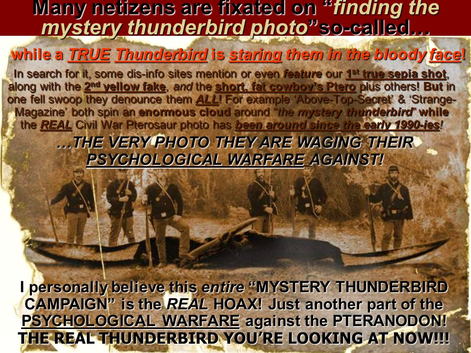 Many netizens are fixated on finding the mystery thunderbird photo so-called…