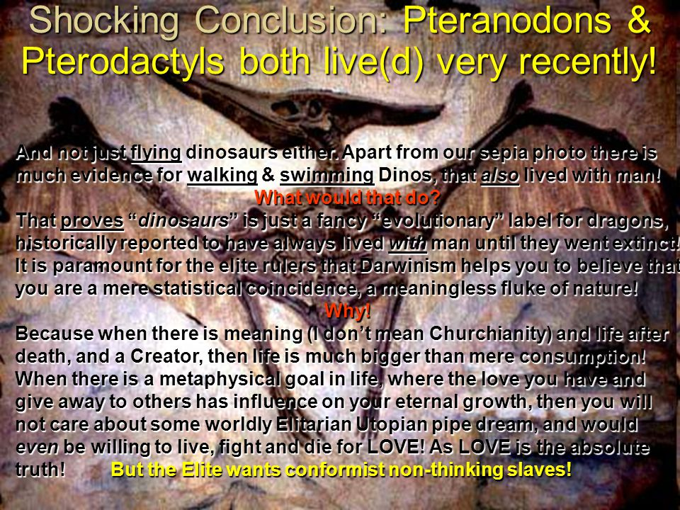 Shocking Conclusion: Pteranodons & Pterodactyls both live(d) very recently!