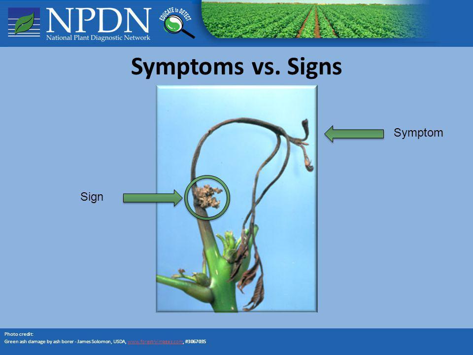 Symptoms vs. Signs Symptom Sign