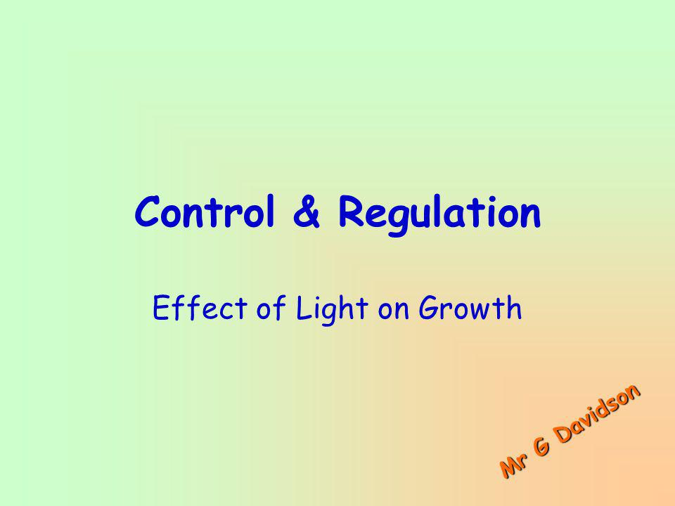 Effect of Light on Growth