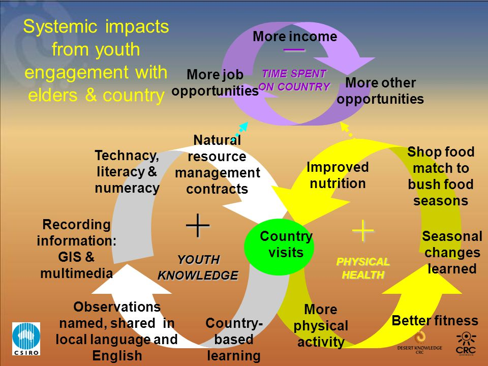 Systemic impacts from youth engagement with elders & country