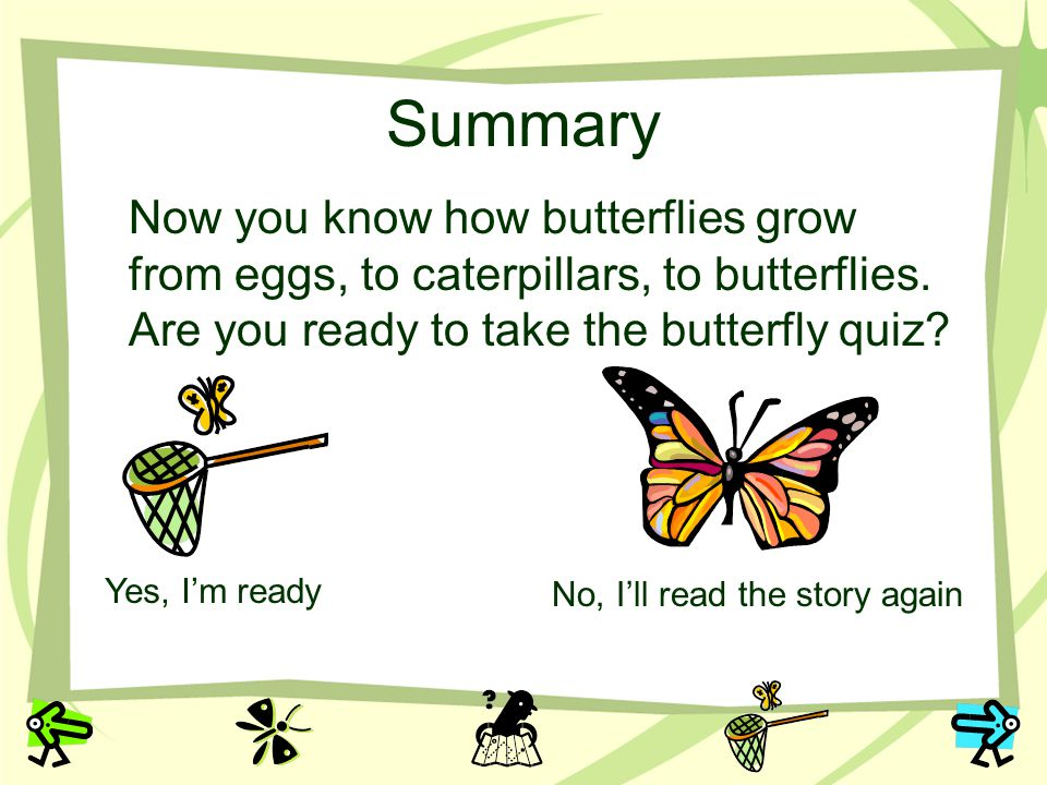 Summary Now you know how butterflies grow from eggs, to caterpillars, to butterflies. Are you ready to take the butterfly quiz