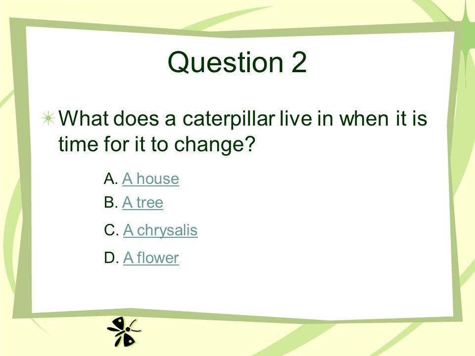 Question 2 What does a caterpillar live in when it is time for it to change A. A house. B. A tree.