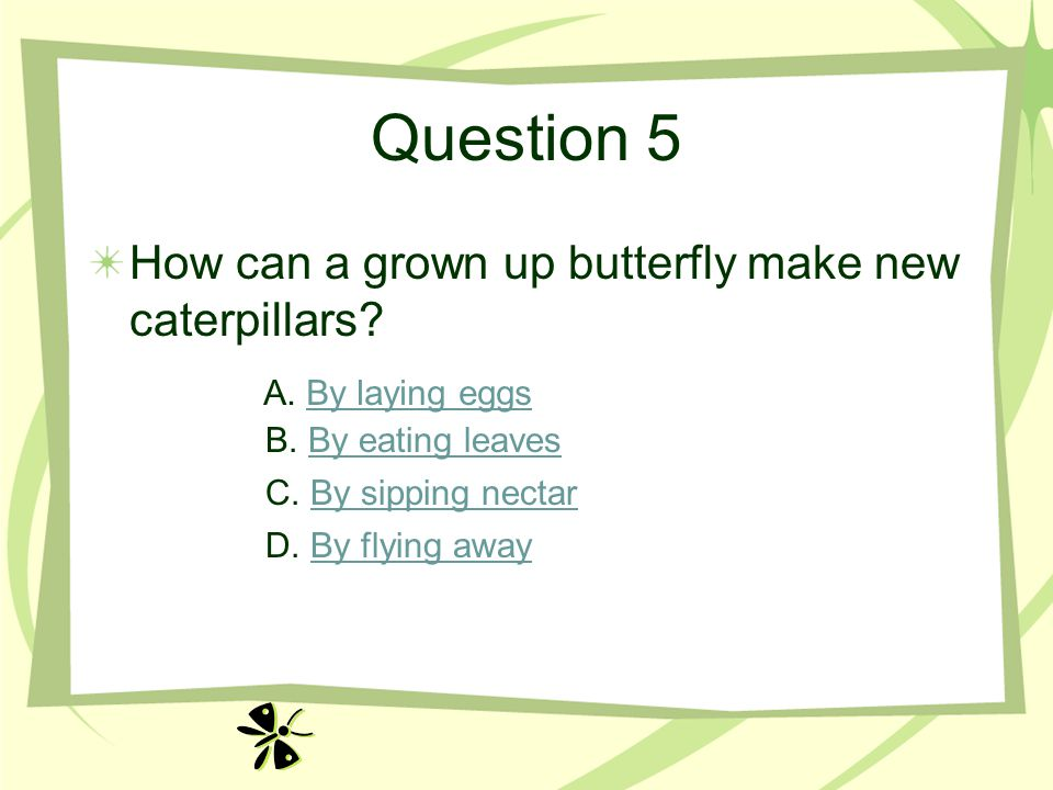 Question 5 How can a grown up butterfly make new caterpillars