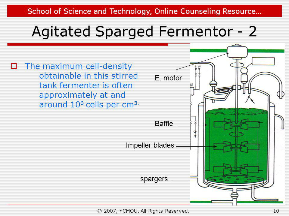 Agitated Sparged Fermentor - 2