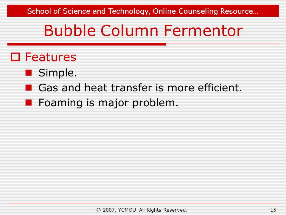 Bubble Column Fermentor