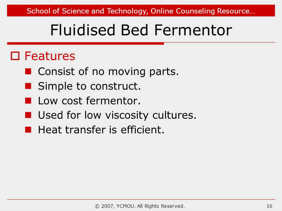 Fluidised Bed Fermentor