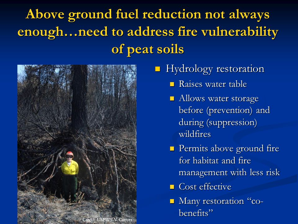 Above ground fuel reduction not always enough…need to address fire vulnerability of peat soils