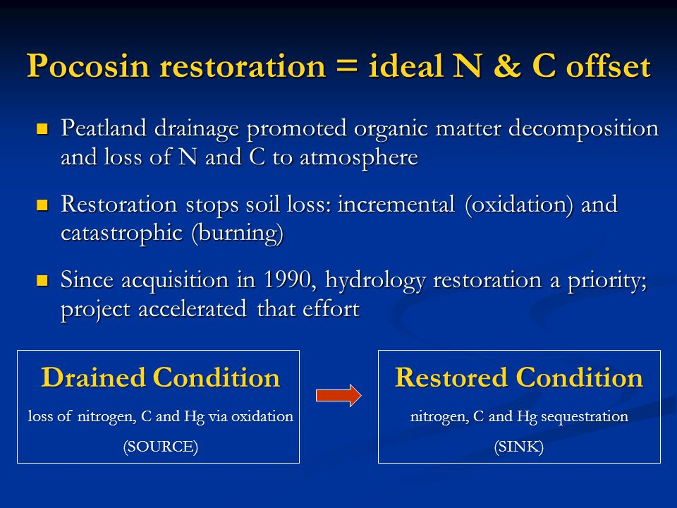 Pocosin restoration = ideal N & C offset